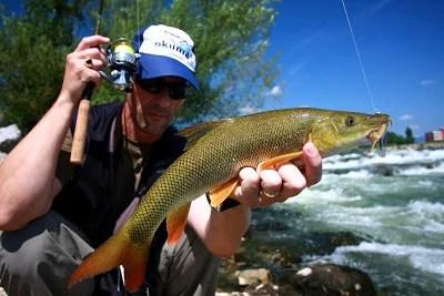 Spin Fishing Tips