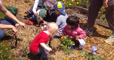Growing healthy vegetables with kids