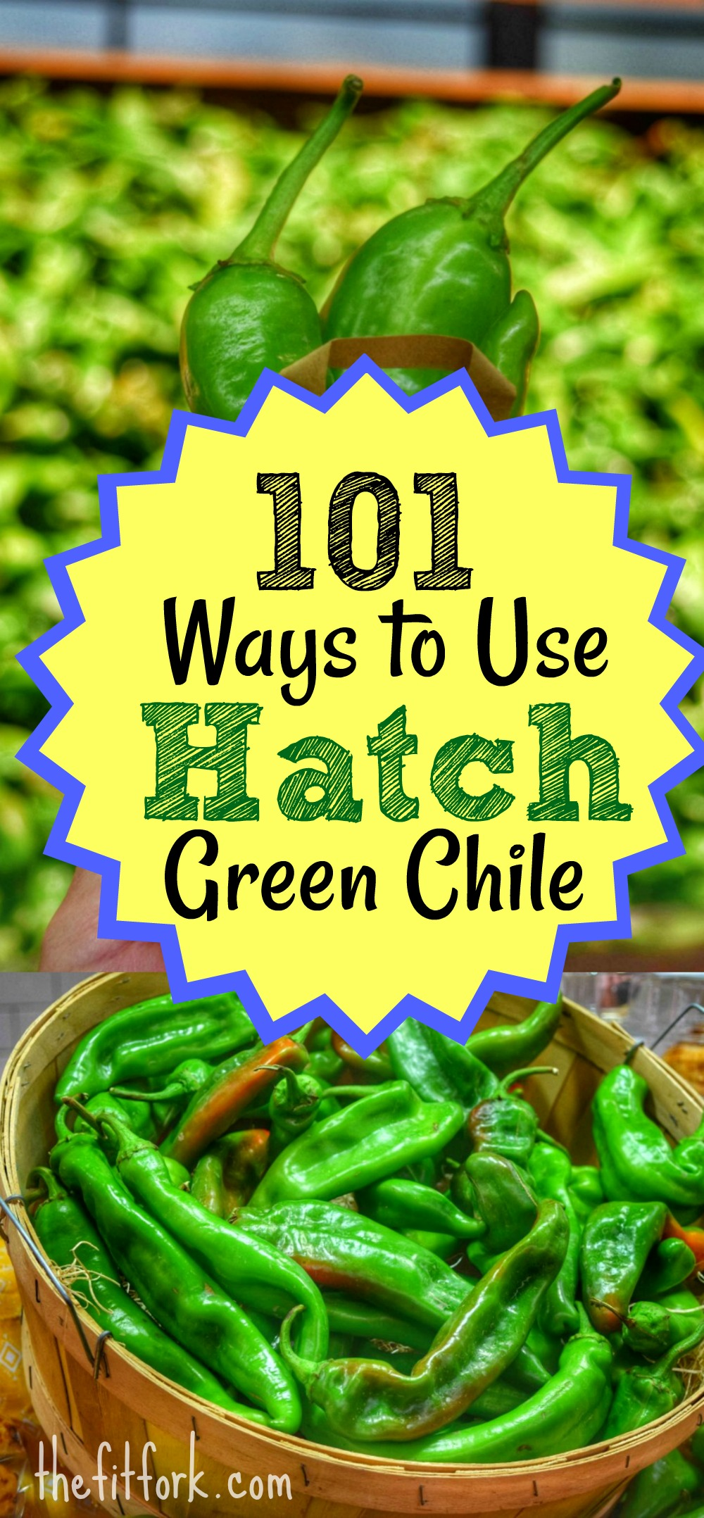 How to make grandma's macaroni salad · add cold elbow macaroni noodles, eggs, and diced stalks celery in a mixing bowl and mix well. 101 Ways to Use Hatch Green Chile + Central Market