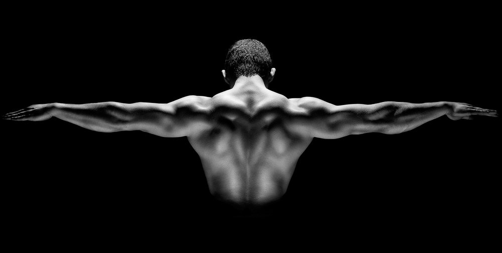 EFFECTIVE BACK EXERCISES YOU'VE NOT TRIED The Fitness Maverick