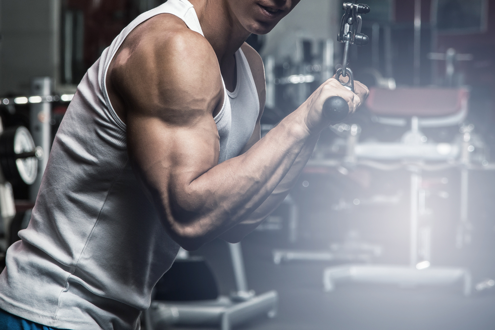 5 Exercises for a Mass Building Arms Workout The Fitness Maverick