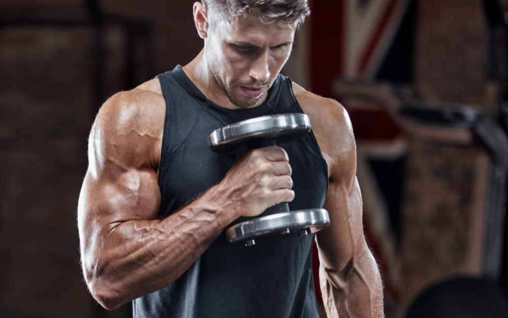 Part 1: The 3 exercises you need for bigger biceps The Fitness Maverick
