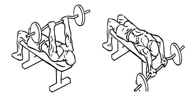 EZ bar lying triceps extension