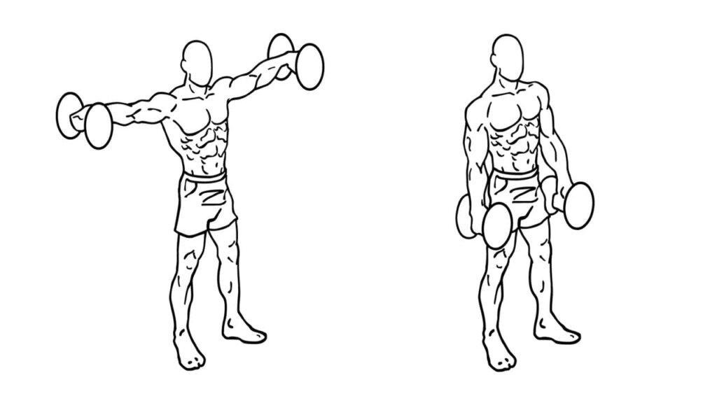 Best Shoulder workout with dumbbells