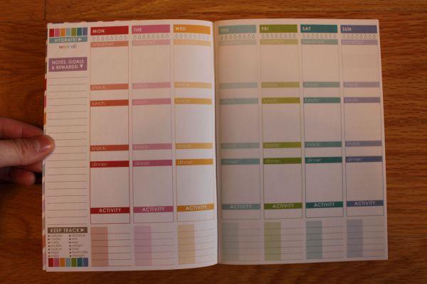 wellness journal erin condren