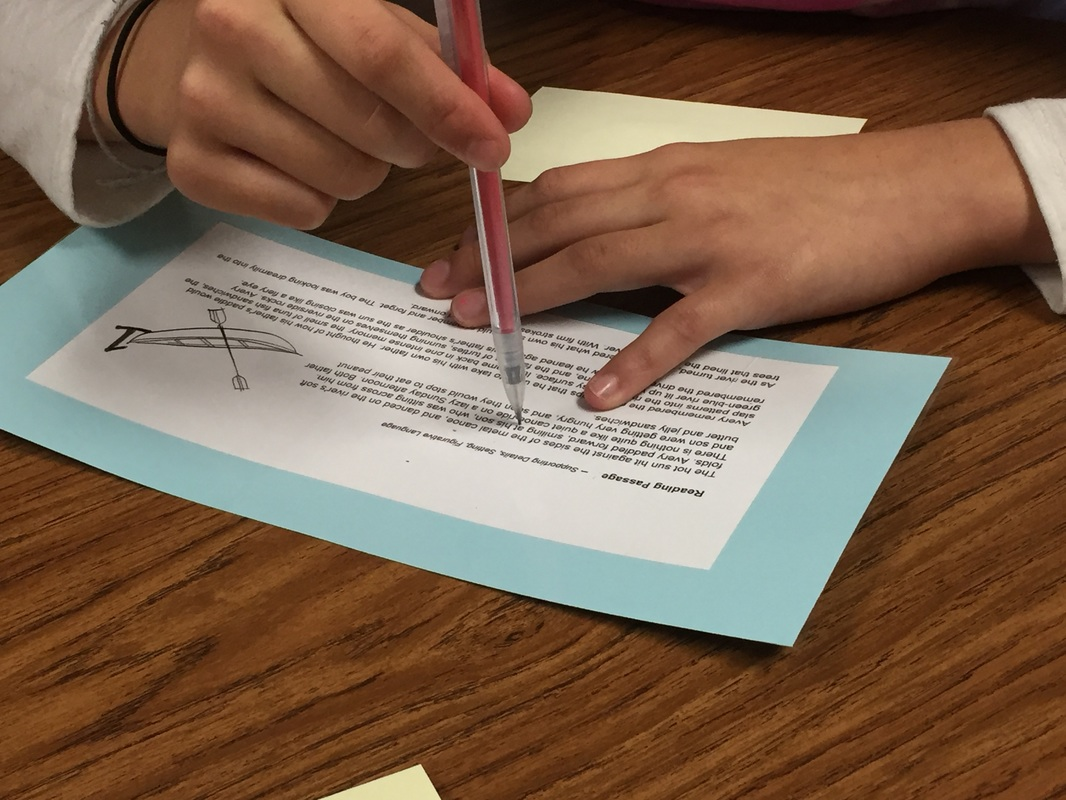 Category Staar Review