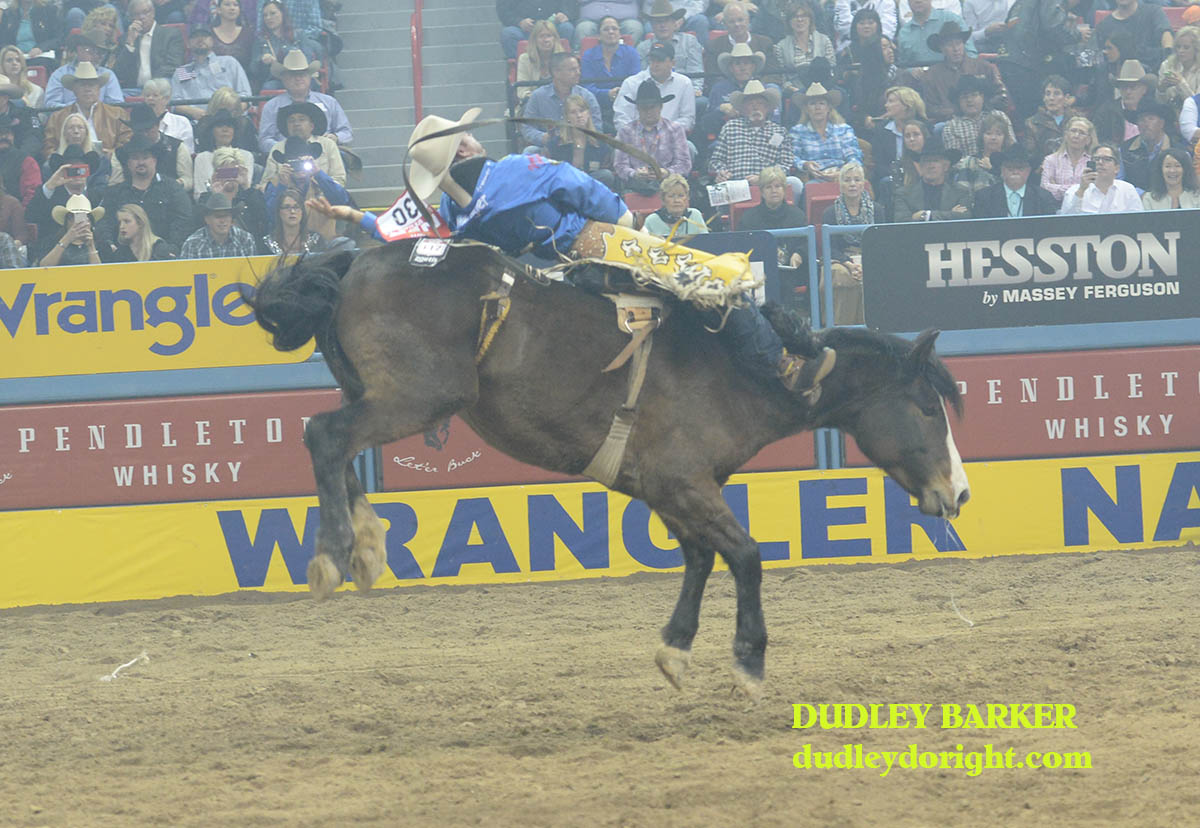 Bobby Mote just missed the money, finishing fifth in the bareback riding during the second go-round at the WNFR Friday night. || Photo by DUDLEY BARKER, dudleydoright.com