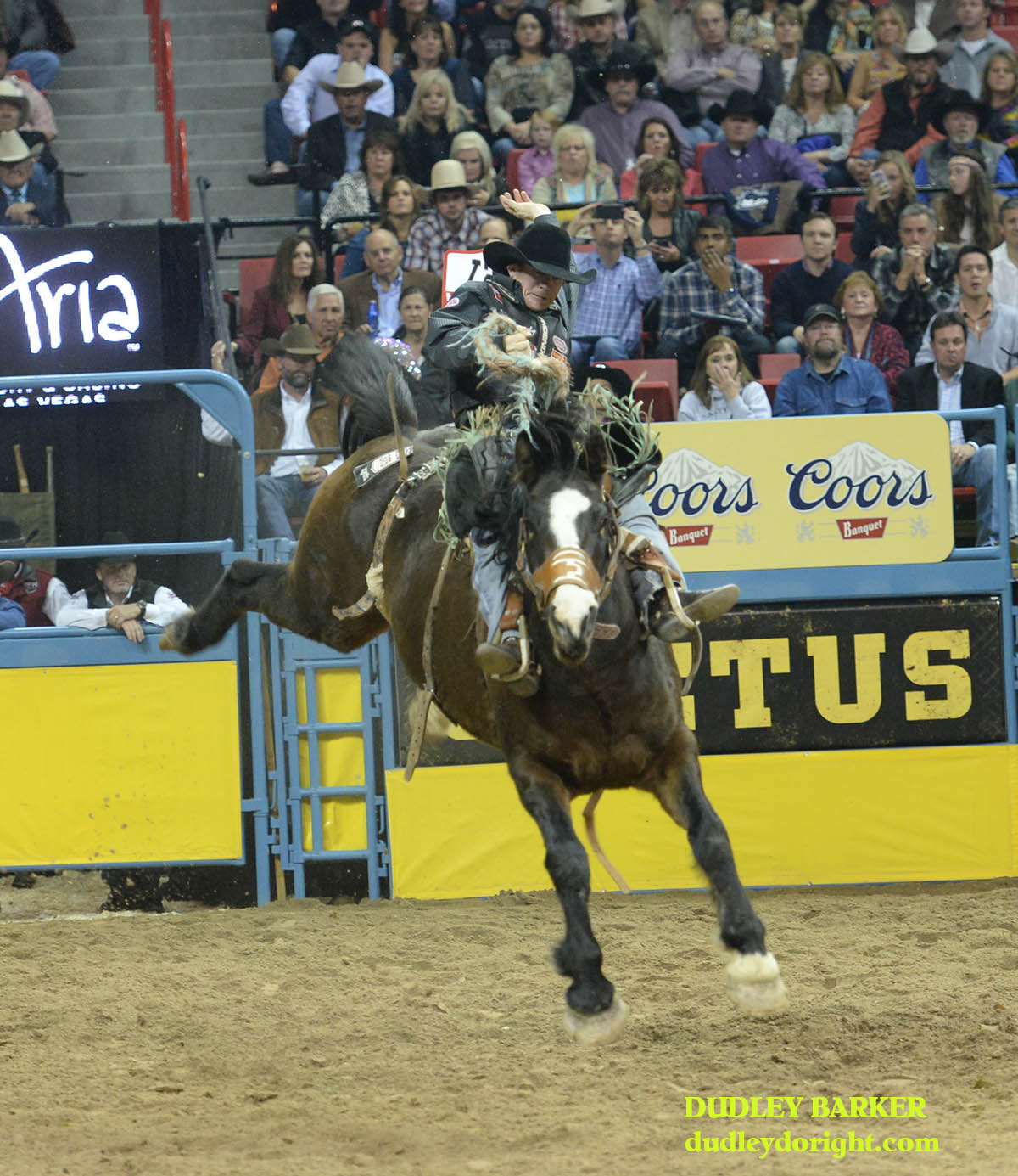 Jacobs Crawley won the second go-round Friday night and is second in the average through two performances at the Wrangler National Finals Rodel. || Photo by DUDLEY BARKER, dudleydoright.com
