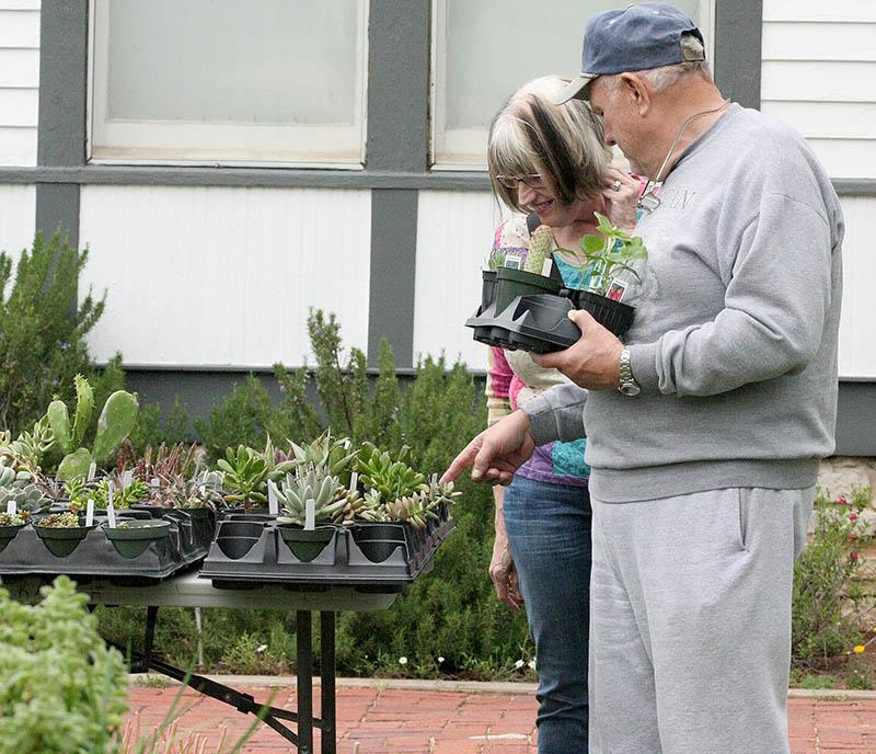 Plant Fair 06
