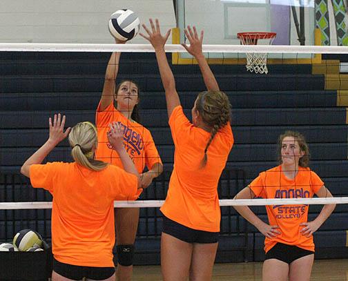 Honeybee volleyball practice 09