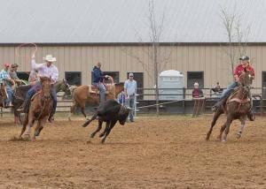 Crawford vet rodeo 04