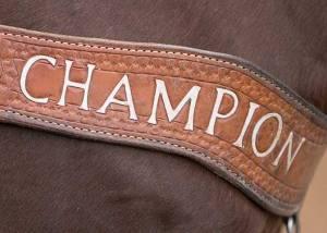 Crawford vet rodeo 05