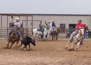 Crawford vet rodeo 11
