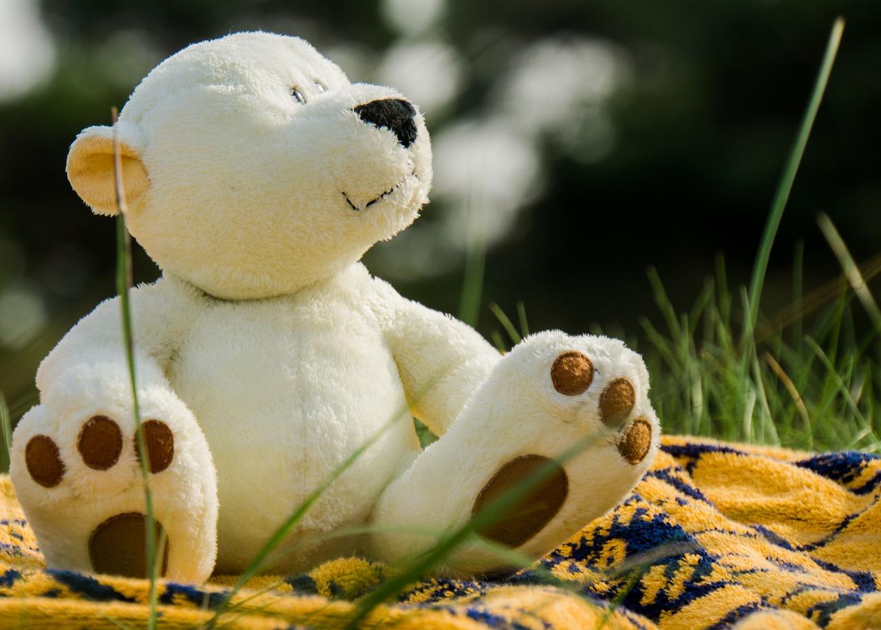 bear-1060700_1280