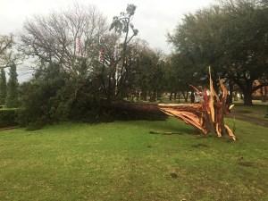 March 8 Storm Damage 41