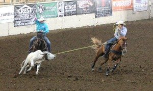 THSRA Reg III Rodeo 15