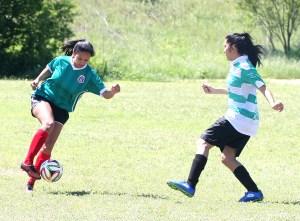 Cinco De Mayo Soccer 16