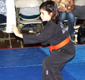 Cowboy Capital Karate 04