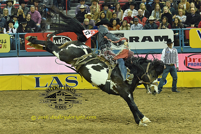 nfr2016-9-151-sterlingcrawley-4×6