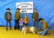 Show Auction 7