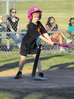 Youth Baseball 6