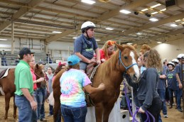 TREAT rodeo 4