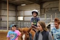TREAT rodeo IMG_7923