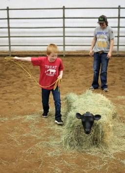 TREAT rodeo IMG_7948