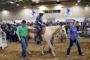 TREAT rodeo IMG_7997
