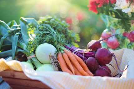 Vegetables for eye care; Eyes; Eye health