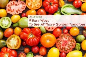 9 easy ways to garden tomatoes