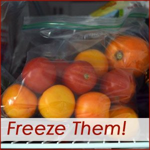 freeze them