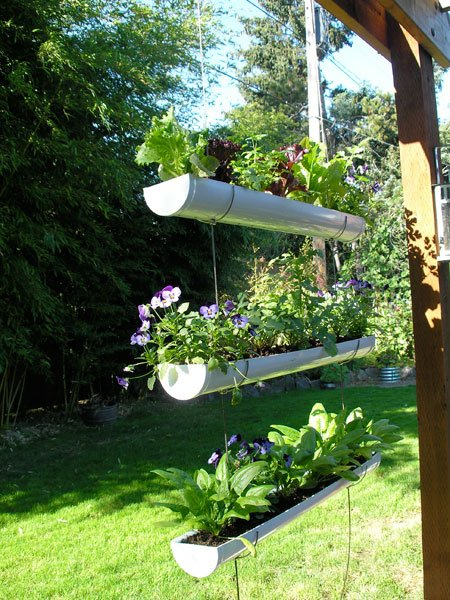 Growing Herbs in Gutter via The Self Sufficient Living