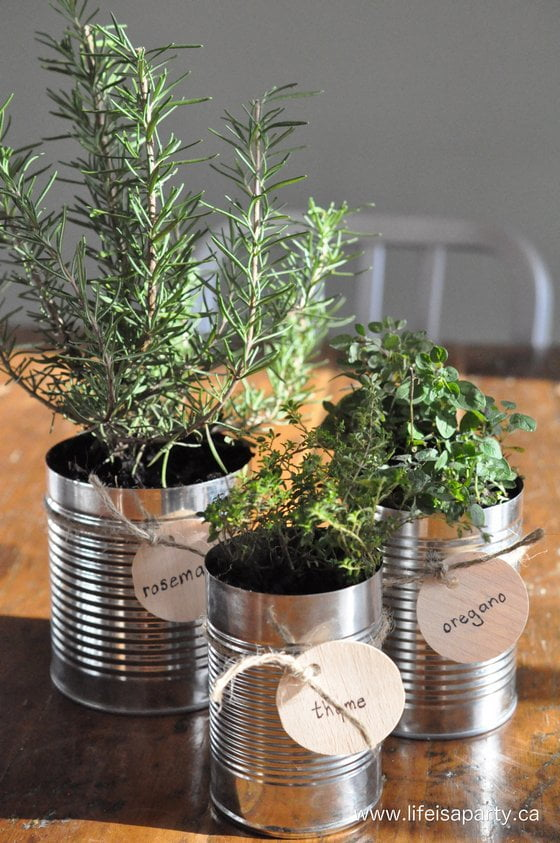 Tin Can Herb Garden by Life Is A Party