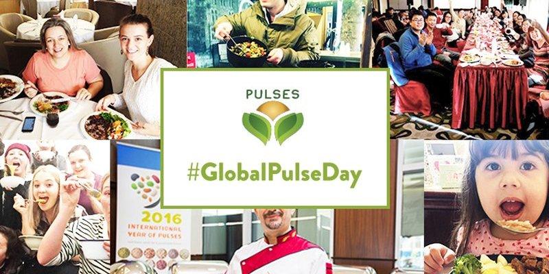 World Pulse Day 2017