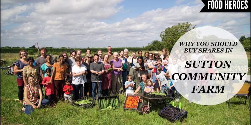 Sutton Community Farm Share Offer
