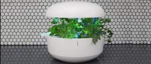 Review Plantui 6 Indoor Smart Garden v8