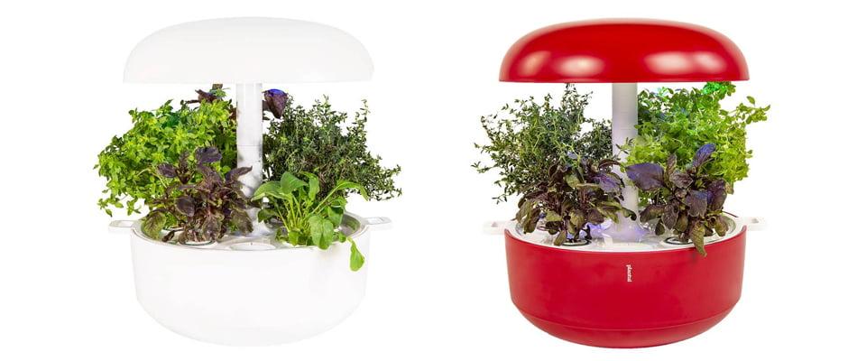 Win A Plantui 6 Indoor Smart Garden v8