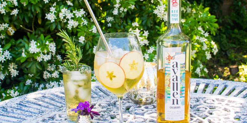 WIN a Bottle of Avallen Calvados - The Sustainable Apple Brandy on A Mission To Help Save Wild Bees