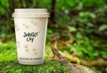 Photo of BrandBase launches Jungle Cup; first plastic-free, home compostable disposable cup