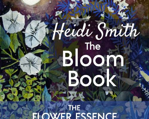 FEP28 Heidi Smith and the Bloom Book