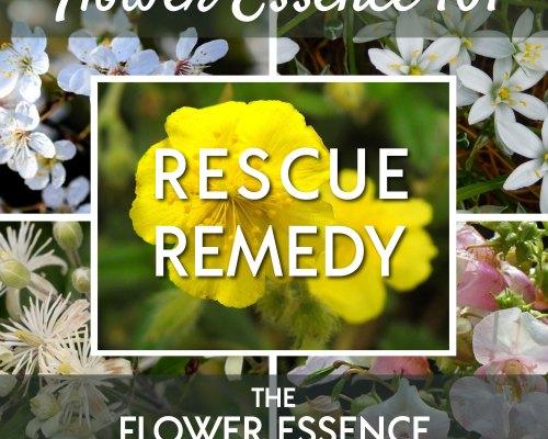 FEP34 Flower Essence 101 Rescue Remedy