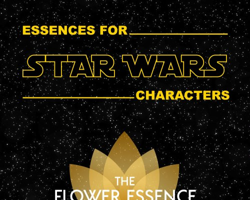 FEP 39 Essences for Star Wars Characters