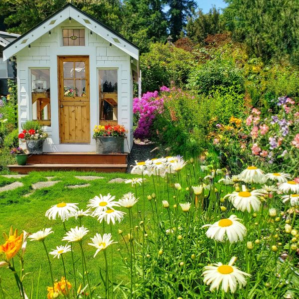 cottage style white greenhouse or garden shed
