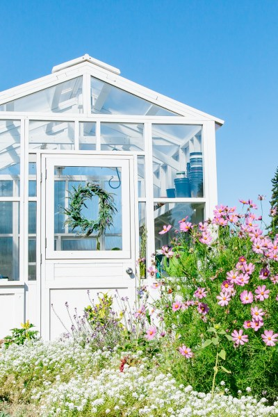 photo of greenhouse in front of cut flower garden