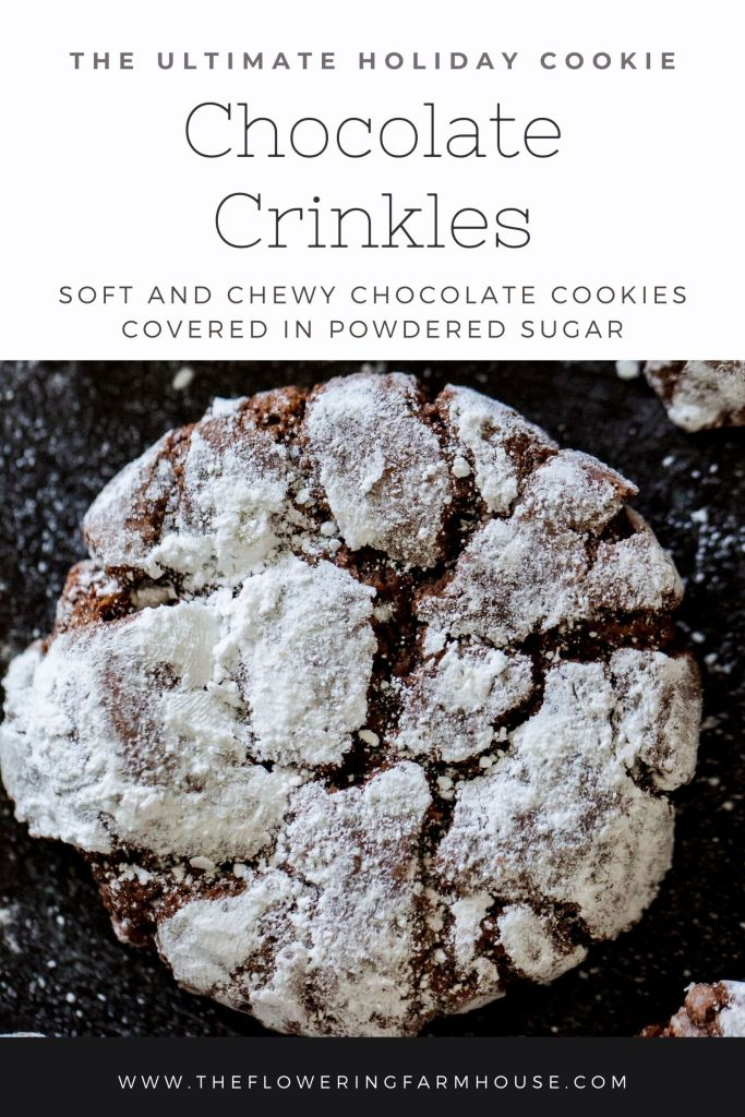 chocolate crinkle cookie recipe