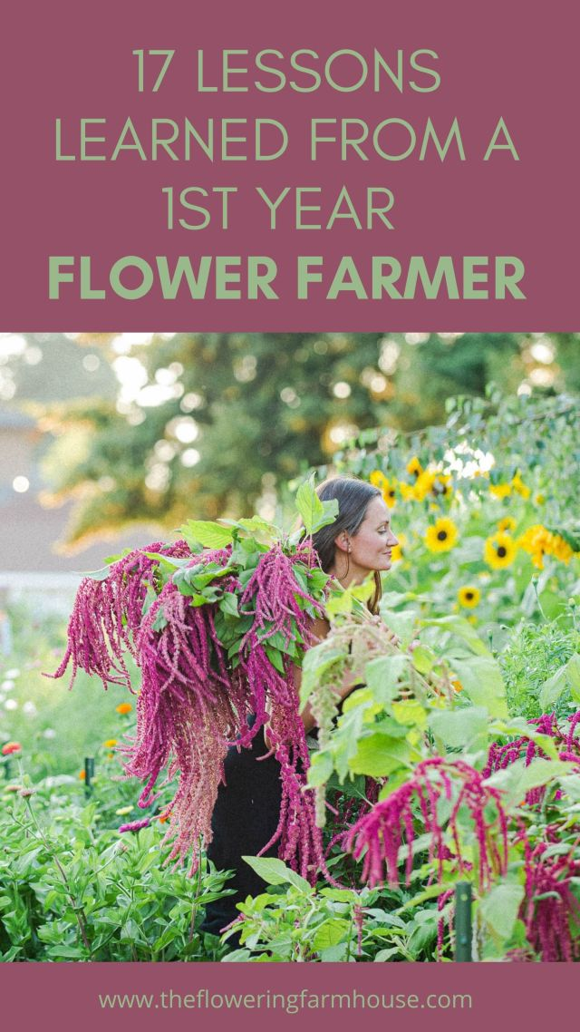 17 LESSONS LEARNED FROM A 1ST YEAR FLOWER FARMER