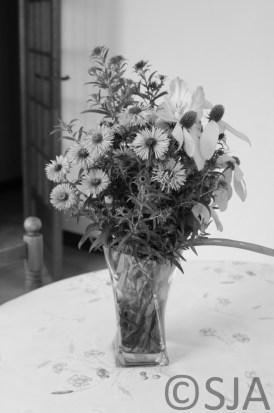 vase-flowers-black-and-white