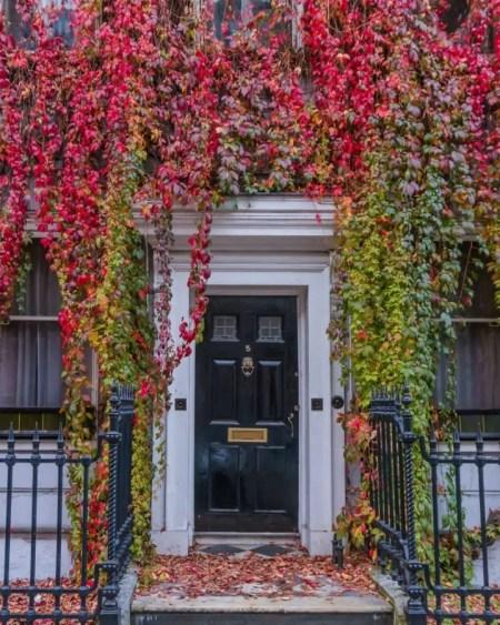Wimpole Street is a beautiful instagram spot in London in autumn