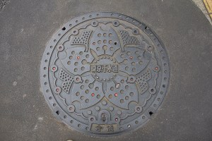 Tokyo water main cover